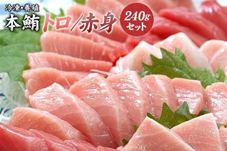 本マグロ(養殖)トロ&赤身セット 240g(串本町×北山村)【nks113】