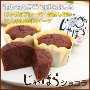 【j-10】じゃばらショコラ 48g×8個入