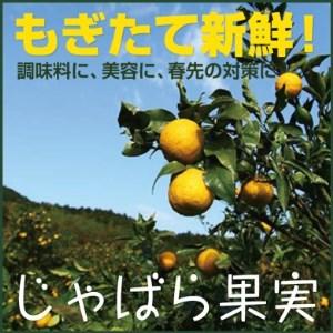【j-20】じゃばら果実(3キロ)【予約受付/11月下旬より順次発送】