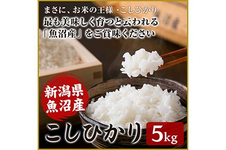 【M-16】10月上旬より発送(予約受付)29年度産新潟県魚沼産こしひかり 5kg