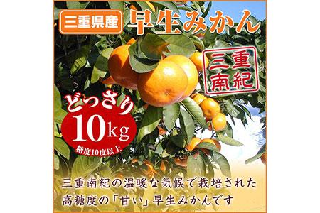 【mn-0110】【予約受付:11月上旬発送】早生みかん【糖度10度以上】 10kg