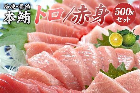 本マグロ(養殖)トロ&赤身セット 500g(串本町×北山村)【nks110】