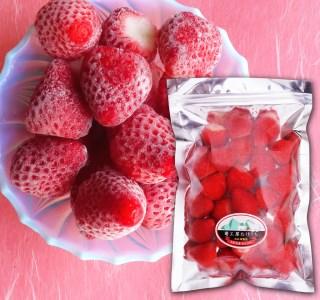 【518】冷凍イチゴ 鳥取県産「あきひめ」