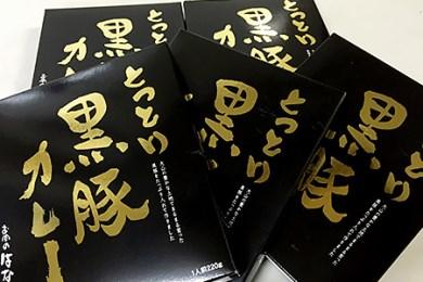 【A-20】鳥取黒豚カレー