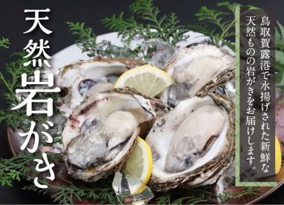 【071】鳥取賀露港 天然岩がきセット