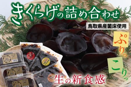 【148】きくらげの詰め合わせ(鳥取県産菌床使用)