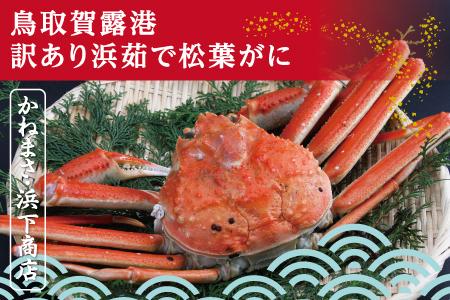 【234】鳥取賀露港 訳あり浜茹で松葉がに 大 1枚