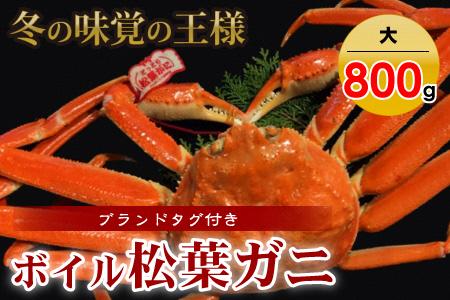 【魚倉】タグ付きボイル松葉ガニ(大800g)