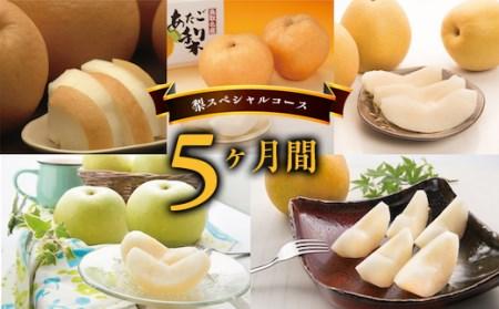 Y003 八頭の梨スペシャルコース