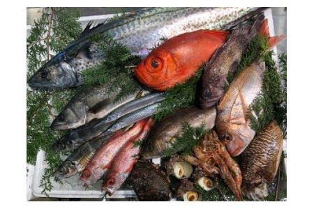 76.季節の高級鮮魚セット