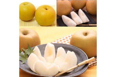 旬の赤梨ミックスセット 4~5kg前後【高間商店】◆