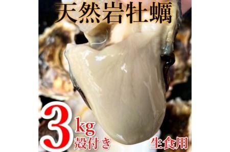 天然岩ガキ 3kg(殻付き) 岩牡蠣 牡蠣 かき【高間商店】
