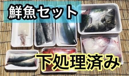 OM-39 みくりや季節の鮮魚セット(下処理済み)
