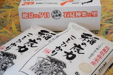 120. 浜田産「稲の底力」こしひかり10kg【1P】