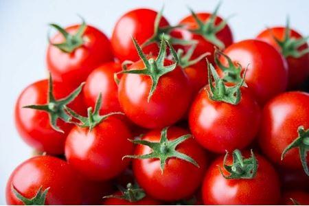 出雲の國からの贈り物~トマトを超えた超トマト1kg【1-084】