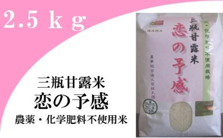 A130 農薬・化学肥料不使用米「三瓶甘露米・恋の予感」(令和元年産)2.5kg⑤五分精米