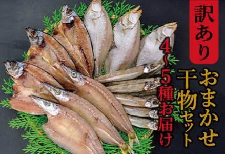 A148 【訳あり】魚の干物おまかせ詰合せセット