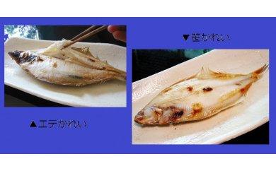 A008 おおだの定番干物!かれい食べ比べセット(6~9尾)