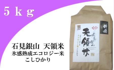 A032 石見銀山天領米(氷感熟成エコロジー米こしひかり)(令和元年産) 5kg