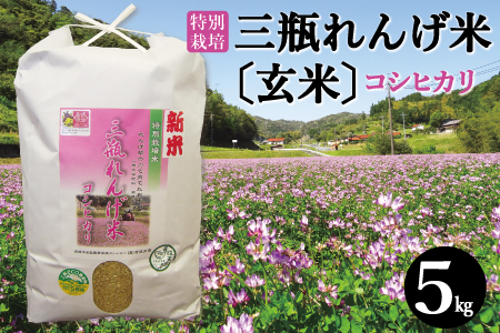 A052① 【玄米】特別栽培米 三瓶れんげ米コシヒカリ(令和元年産)5kg