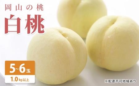 岡山の桃 白桃 5~6玉(約1kg)【配達不可:北海道・沖縄・離島】