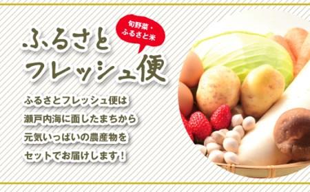 A-54 ふるさとフレッシュ便(旬野菜・ふるさと米)