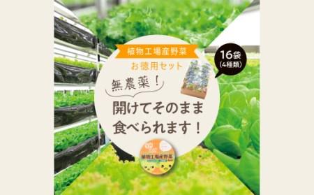 1-34 植物工場産野菜・お徳用セット