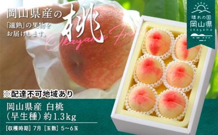 岡山県産 白桃(早生種)約1.3kg(5~6玉)【配達不可:離島】