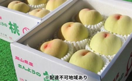 農マル園芸あかいわ農園 赤磐市産 おかやま夢 白桃 約2kg(5~6玉)ご家庭用