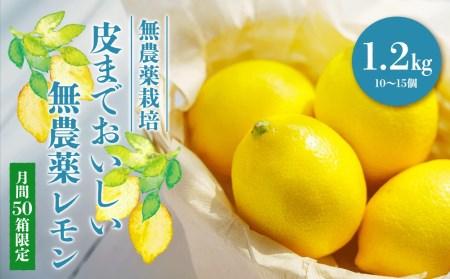 【月間50箱限定】皮まで美味しい無農薬レモン1.2㎏