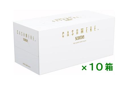 【2604-1084】スコッティ カシミヤ×10箱