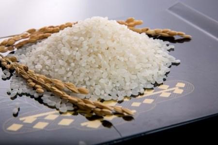 01A-035 山口の美味しいお米定期便 5㎏×12回(白米)