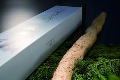 28D-025 土井志則の自然薯