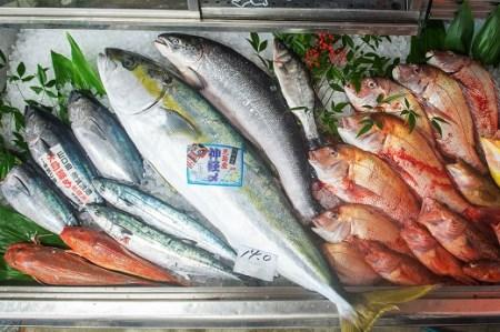 30A-013 山口県漁協大海海の幸セット 年4回セット