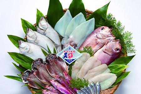旬の高級魚干物セット