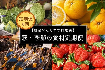 【野菜ソムリエプロ厳選】萩・季節の食材 定期便【6回コース】