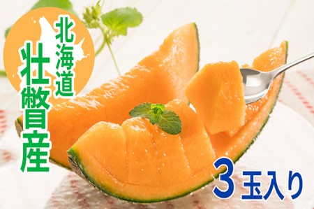 <2020年7月中旬よりお届け>北海道壮瞥産 赤肉メロン「北紅クイーン」3玉入り 約6kg