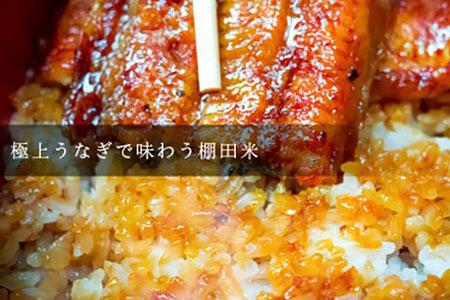 棚田のうな重セット(棚田米 精米3kg 鰻2尾)