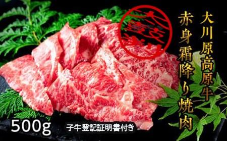 大川原高原牛赤身・霜降り焼肉500g※クレジット決済のみ ※2021年1月中旬頃から発送