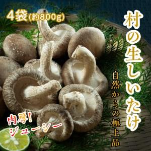 菌種や自然栽培にこだわった岡本さんちの生しいたけ 200g×4袋