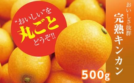 さなごうちフルーツ金柑 500g ※2020年2月頃から発送