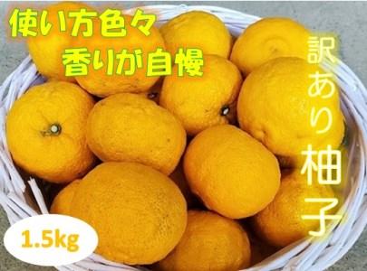 訳あり柚子(約1.5kg)※11月頃から発送 ※クレジット決済のみ