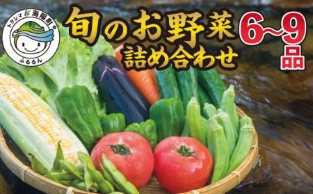 SGN28 阿波の国海陽町 旬のお野菜詰め合わせセット2-3名様向け