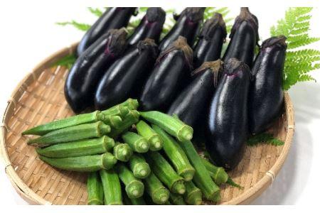 HRO03 平岡農園 夏の野菜セット(小)