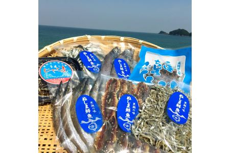 SGN24 南阿波よりお届け!海の恵み「干物セット」約4品