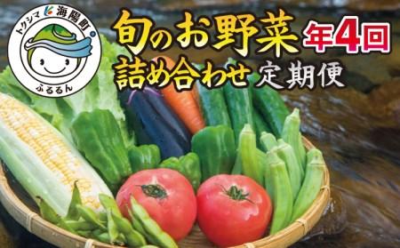 SGN15【定期便年4回】阿波の国海陽町 旬のお野菜詰め合わせセット4-5名様以上向け