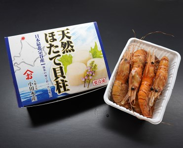 宗谷産ホタテ1キロ&卵付きジャンボボタンエビ500グラム【03021】