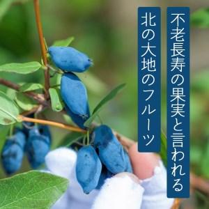 0027 日本一の産地 北海道厚真産ハスカップ1kg