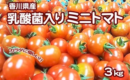 カラダに優しい「乳酸菌入り ミニトマト3kg」(配送不可:北海道・沖縄県・離島地域)