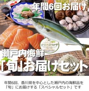 【G-1】【定期便】瀬戸内海鮮「旬」お届けセット(1年で6回のお届けとなります)